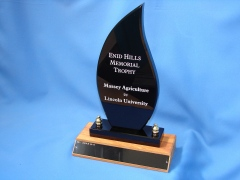 A custom variation for the Enid Hills Memorial Trophy