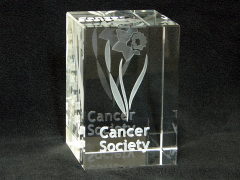3d Cancer Society Logo