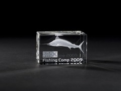 3d Marlin - Fishing Comp - Example crystal