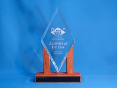 Volunteer of the Year trophy for Western Districts Surf Life Saving Association
