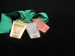 Swimming Manawatu Age Group Medals