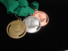Swimming Manawatu Open Medals