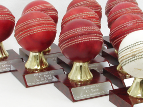 Palmerston Cricket Club awards for 2020-21